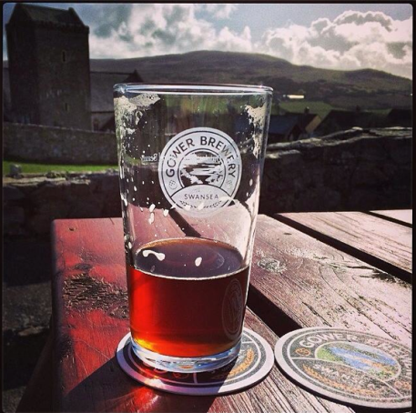 A Gower in the sun from Mark at the Kingshead